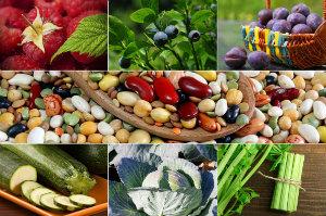 Jedz sezonowo - 7 źródeł witamin w sierpniowych warzywach i owocach [fot. collage Senior.pl]