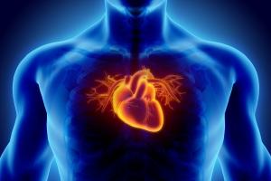 Jedz te produkty, a Twoje serce będzie silne i zdrowe [Fot. yodiyim - Fotolia.com]