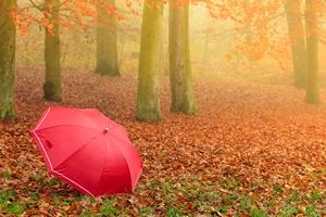 Jesień przyszła. Nie ma na to rady [© Voyagerix - Fotolia.com]