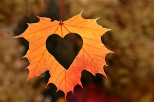 Jesień: sezon na zawały serca [© unverdorbenjr - Fotolia.com]
