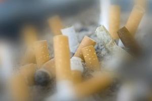 Jesteś biernym palaczem? Dlatego tyjesz [© Eric Isselée - Fotolia.com]
