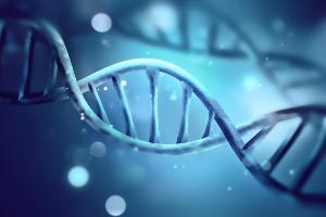 JuÅź jedna zmiana w DNA moÅźe przedłuÅźyć Åźycie o kilkanaście lat [Fot. Zffoto - Fotolia.com]