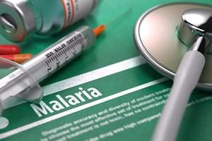 Już jest skuteczna szczepionka na malarię [© tashatuvango - Fotolia.com]