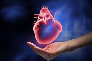 Kardiologia inwazyjna: żyła złota dla prywatnych szpitali [© Sergey Nivens - Fotolia.com]