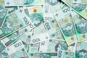 Kobiety mają długi w firmach pożyczkowych, a mężczyźni w bankach [Fot. ekaterina729 - Fotolia.com]