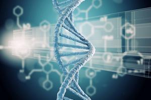 Komórki regeneracyjne i macierzyste: sposób na zdrowe stawy i bujne włosy [© Sergey Nivens - Fotolia.com]