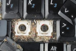 Komputer i telefon źródłem... zarazków [Fot. Andrzej Tokarski - Fotolia.com]