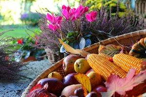 Koniec lata - zaczyna się jesień [© goldbany - Fotolia.com]