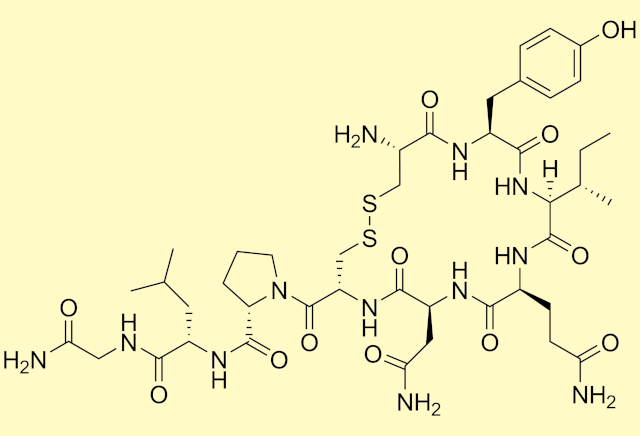 """Koronawirus - pomoÅźe """"hormon miłości""""? [fot. Wikipedia, PD]"""