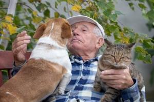 Masz w domu zwierzaka? Pożyjesz dłużej i w lepszym zdrowiu [Fot. Budimir Jevtic - Fotolia.com]