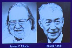 Medyczny Nobel 2018 za odkrycie immunoterapii pomocnej w walce z rakiem [fot. Nobel Prize]