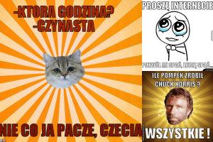fot. memy.pl, fabrykamemow.pl