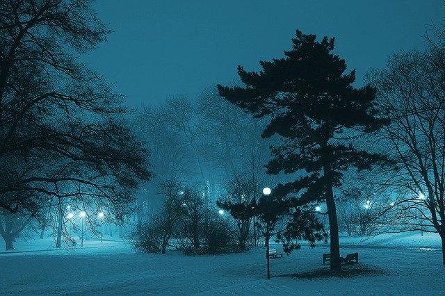 Mniej słońca oznacza więcej zaburzeń kompulsywnych [fot. Henryk Niestrój from Pixabay]