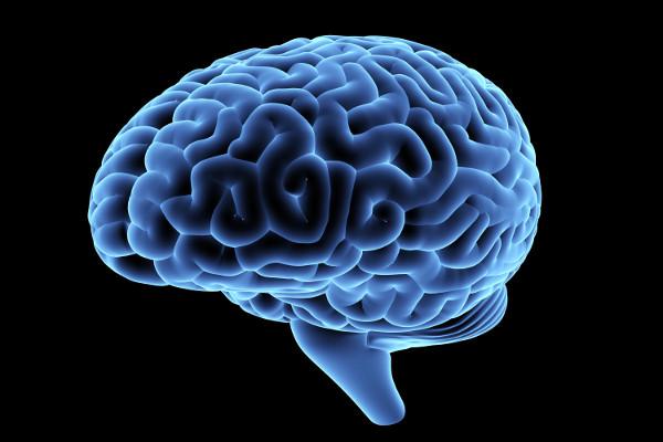 Mózg w najlepszej kondycji tuż przed czterdziestką, potem się starzeje [Fot. iaremenko - Fotolia.com]