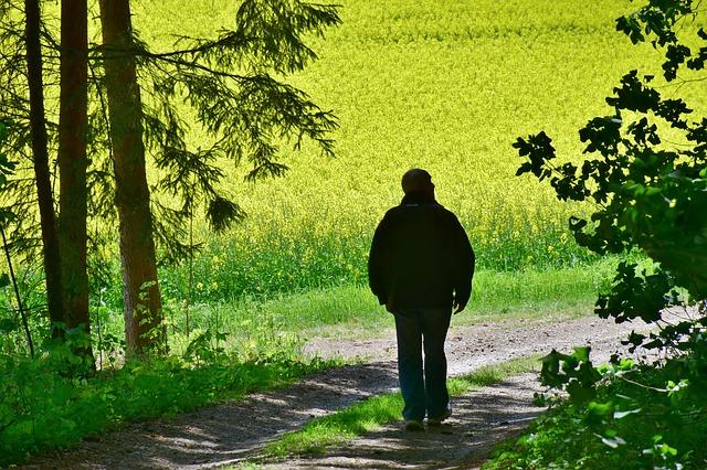 Można uniknąć 40 proc. przypadków demencji. Ważny jest styl życia [fot. RitaE from Pixabay]