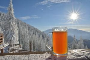 Mróz, śnieg, narty i grzaniec. Odpowiedzialnie z alkoholem [Fot. remus20 - Fotolia.com]
