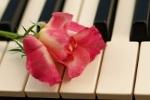 Muzyka łagodzi ból [© Irina Boucher - Fotolia.com]