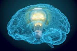 Nadmiar informacji sprawia, że mózg słabiej pracuje [Fot. alexlmx - Fotolia.com]