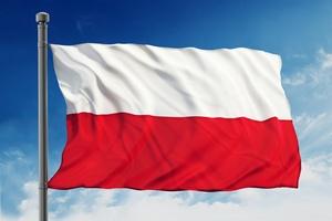 Narodowe Święto Niepodległości 2014 [© destina - Fotolia.com]