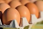 Nasze drogie jaja [© chanelle - Fotolia.com]
