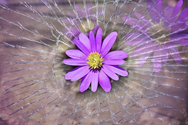 Nie pozwól, by drobne rzeczy zabrały ci poczucie szczęścia [fot. Pezibear from Pixabay]