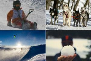 Nie tylko narty. Nietypowe zimowe aktywności [fot. collage Senior.pl]