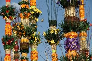 Niedziela Palmowa [© Malgorzata Kistryn - Fotolia.com]