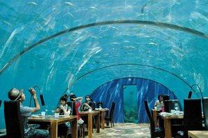 Nietypowe restauracje świata [Ithaa Undersea Restaurant, fot. Qtravel]