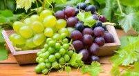 Niezwykłe zastosowania winogron