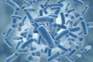 Niezwykłe właściwości probiotyków [fot. Oleofarm]
