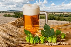 Niezwykłe zastosowania piwa [© Václav Mach - Fotolia.com]