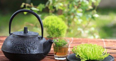 Niezwyk�e zastosowania zielonej herbaty