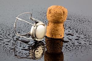 Noworoczny kac - jak mu zapobiec [© Gina Sanders - Fotolia.com]