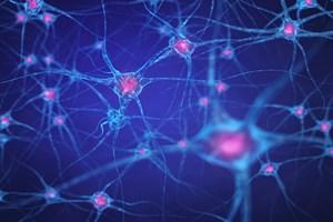 Odchudzaniu sprzyja praca... układu nerwowego [© nobeastsofierce - Fotolia.com]