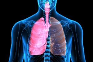 Odetchnij z ulgą - jak dbać o płuca? [Fot. PIC4U - Fotolia.com]