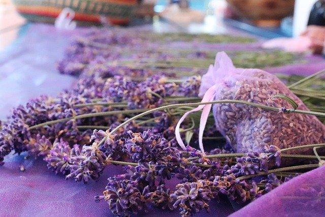 Olejek lawendowy skutecznie łagodzi lęk [fot. v-3-5-N-a from Pixabay]