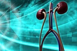 Ostrożnie z suplementami wapnia i witaminy D - mogą skutkować kamicą nerkową [© abhijith3747 - Fotolia.com]