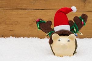 Oszczędzamy na świątecznych zakupach [FILM] [© Karen Roach - Fotolia.com]