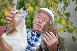 "Pies lub kot ""lekiem"" na depresję [© Budimir Jevtic - Fotolia.com]"