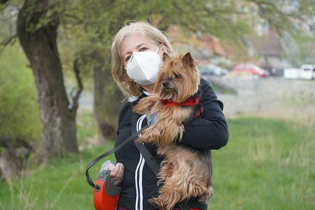 Pies może zarazić się COVID-19, ale nie przeniesie choroby na właściciela [fot. Alexandru Manole from Pixabay]