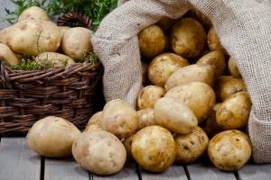 Polacy prawdziwymi amatorami ziemniaków [Fot. Olo - Fotolia.com]