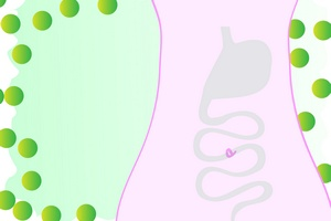 Probiotyki chronią przed biegunką przy terapii antybiotykowej [© Martina Lukáčová - Fotolia.com]