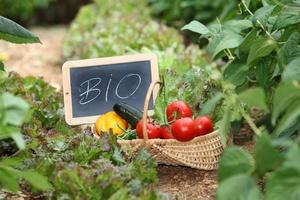 Produkty eko nie zawsze... ekologiczne? [© goodluz - Fotolia.com]
