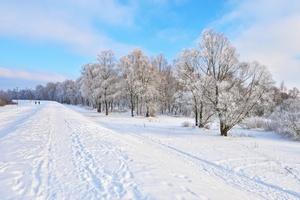 Prognoza pogody: nadchodzą silne mrozy [© boguslaw - Fotolia.com]