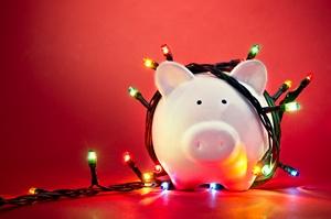 Przygotuj domowy budżet do świąt [© pogonici - Fotolia.com]