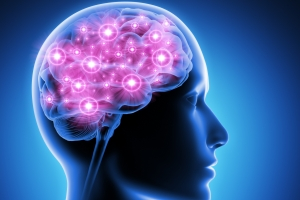 Przyjaźń widać w... aktywności mózgu [Fot. psdesign1 - Fotolia.com]