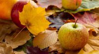Przyszła jesień