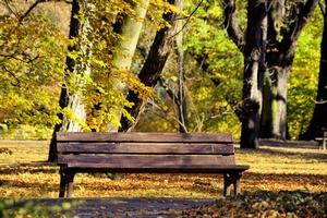 Przyszła jesień 2018 [© satori - Fotolia.com]