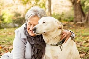 Psy dostrzegają ludzkie emocje [© WavebreakMediaMicro - Fotolia.com]