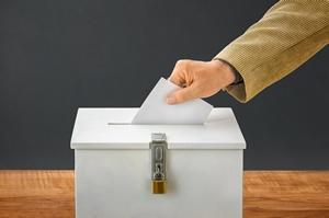 RPO: nie pozbawiać osób ubezwłasnowolnionych praw wyborczych  [© Zerbor - Fotolia.com]